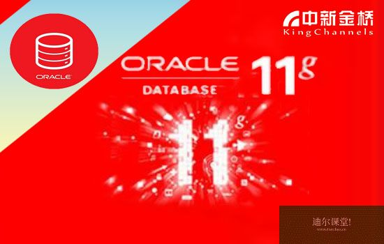 Oracle Database 11